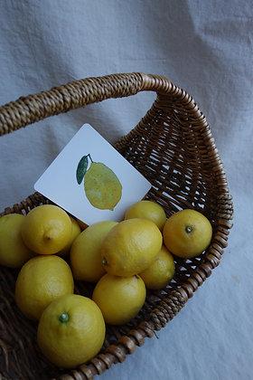 Postkarte Zitrone