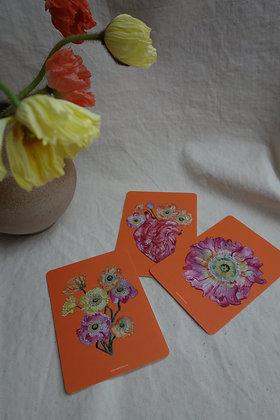 Postkarten Set Mohnblumen