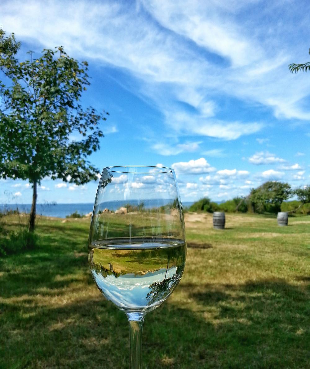 Kontokosta Winery