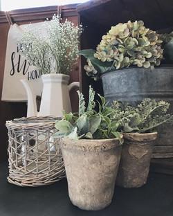 INdesign botanicals