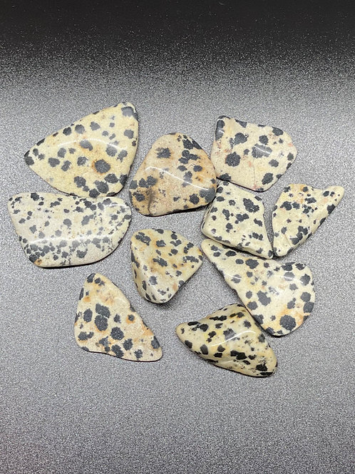 Dalmatian Jasper Polished