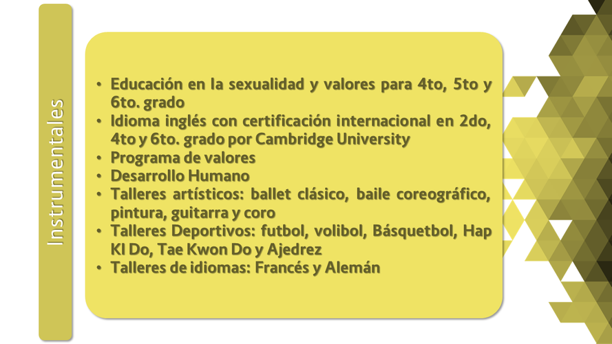 Instrumentales (Primaria).png