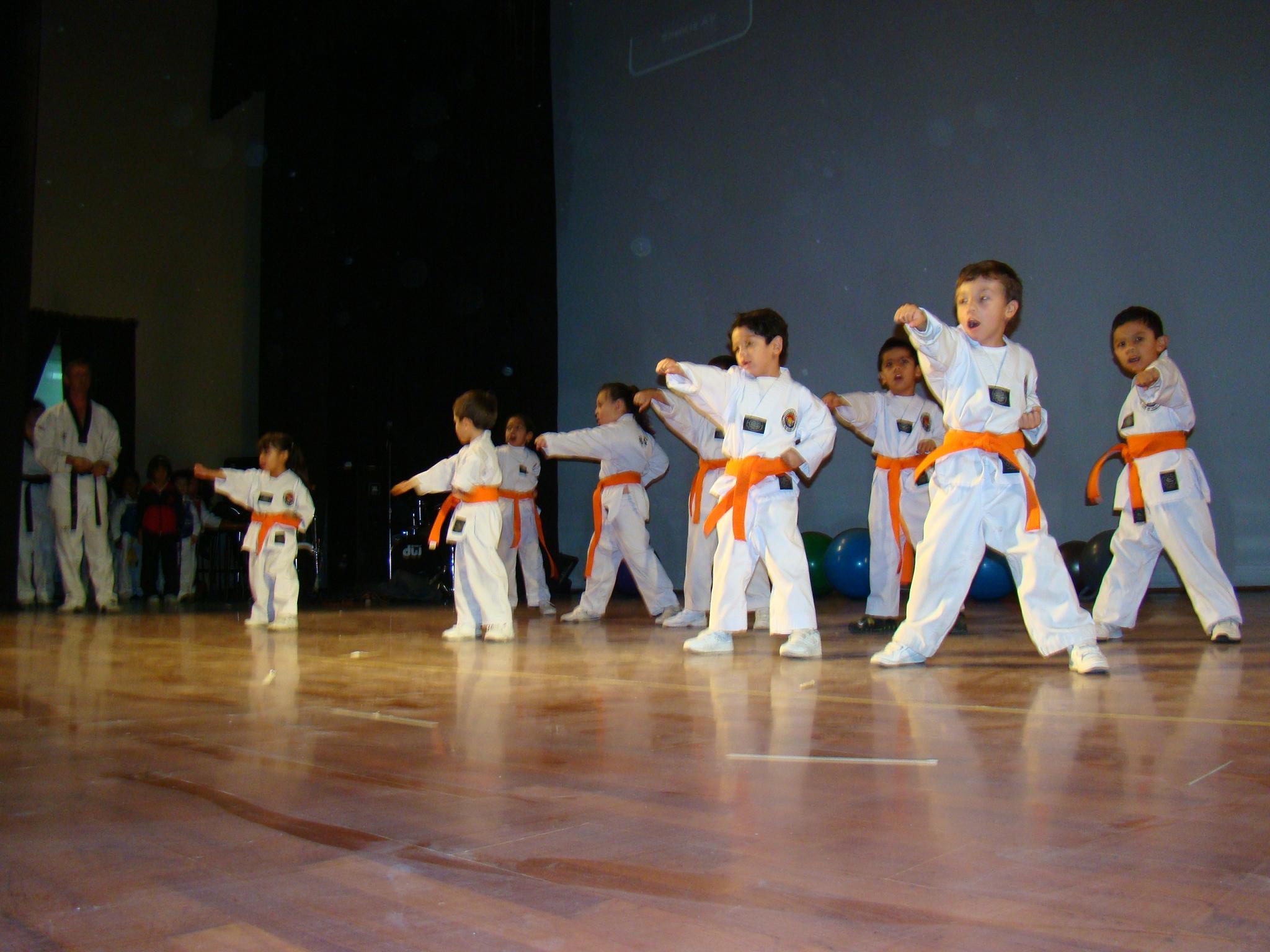 Taekwondo Preescoalr