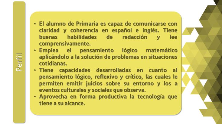 Perfil1 (Primaria).png