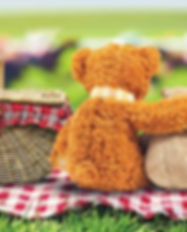 Teddy Bears Picnic.jpg