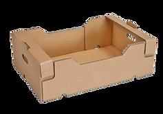 caixa-empilhavel-fruta-600x600.png