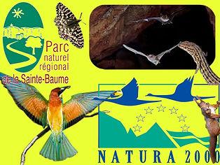 Parc Naturel Régional Ste Baume.jpg