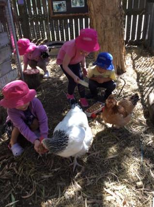 Feeding Our Girls....
