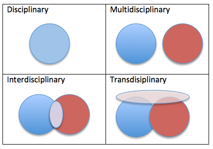 Transdisciplinary Approach - What Does It Mean?