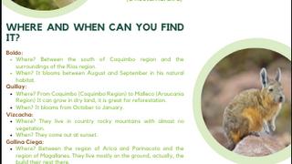 Cypresse reserve