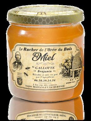 Benjamin GALLOTTE • Le Rucher de l'Orée du Bois (Franche Comté)