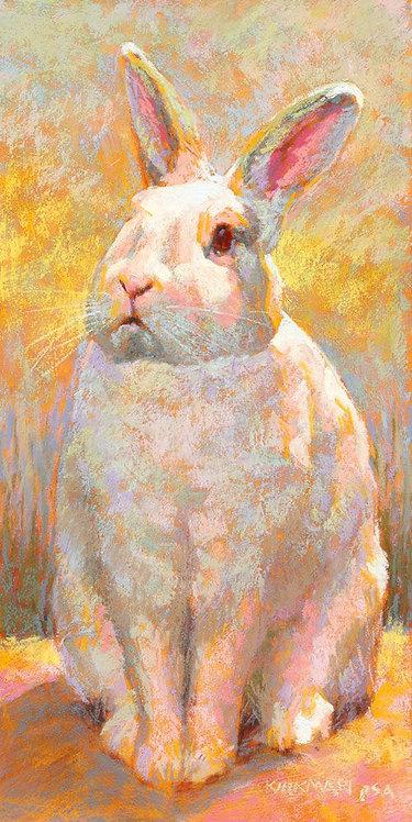 Children's Art Webinar 'Bunny'