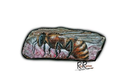 Wasp 11