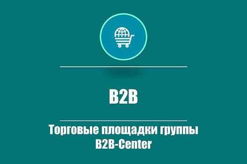 Тариф «B2B»