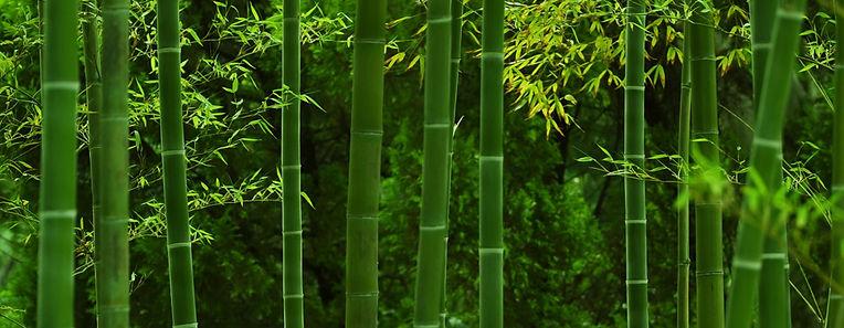 角田紙業 | 品質方針 | 環境方針 | 品質向上