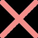 X-SALMON.png