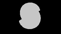 S_C_logo_S_grey.png