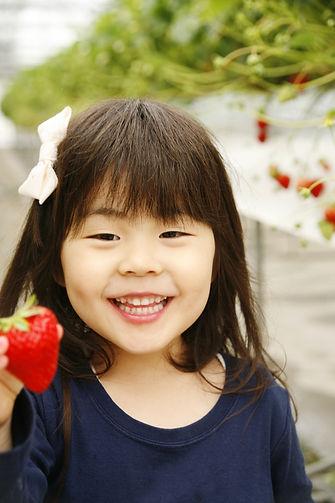 神戸三田、いちご狩りの新さんだ農園 いな岡での楽しそうな女の子