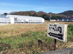 神戸三田、いちご狩り、新さんだ農園 いな岡_看板