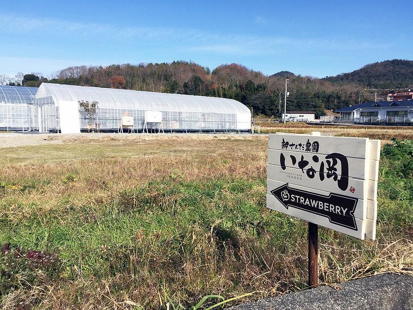 神戸三田、いちご狩り、新さんだ農園 いな岡 いちご狩りハウス誘導看板