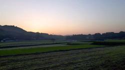 兵庫県三田の夕焼け いちご狩り 新さんだ農園 いな岡