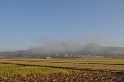 神戸三田、いちご狩り、新さんだ農園 いな岡 田園風景
