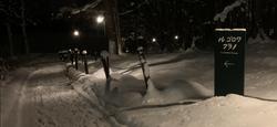ル・ゴロワの雪道