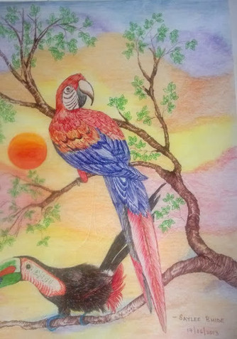 Dodo and the Parrot