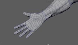 Hands2.PNG