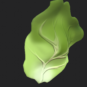 Lettuce Leaf Capture.PNG