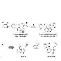 pharmacodynamics page 2-min.jpg