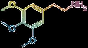 mescaline gradient 3.png