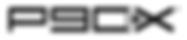 p90x logo.png