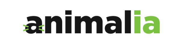 animalia-logo-assurance.png