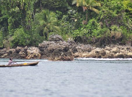 Puerto de Tribugá: El megaproyecto que amenaza con destruir el ecosistema