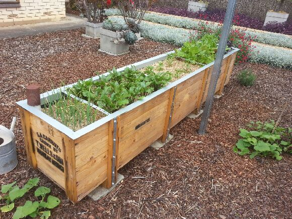 Recycled Crate Planter