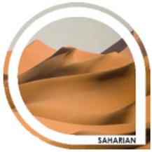SAHARIAN - Blond prononcé