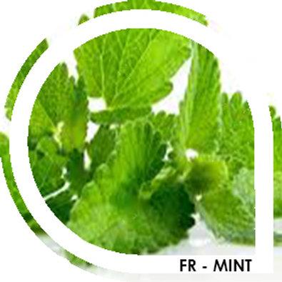 FR-MINT - Blond / menthe