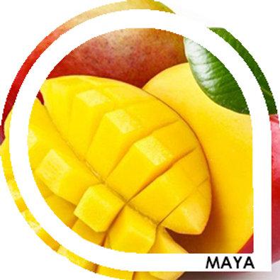 MAYA - Mangue