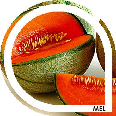 MEL - Melon