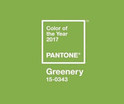 2017: Greenery ist die Farbe des Jahres