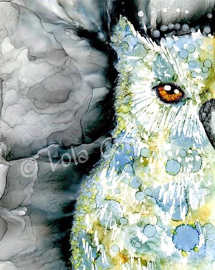 Mr Owl Print
