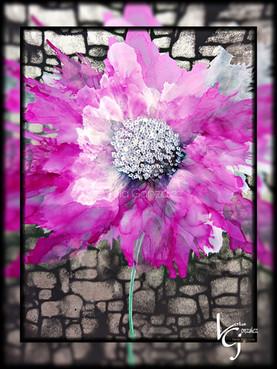 Stone flower beauty
