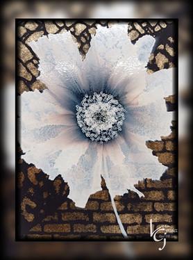 brick bloom