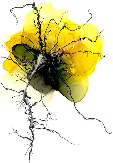 Large abstract yellow flower Print