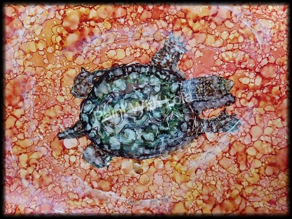 Turtle art.jpg