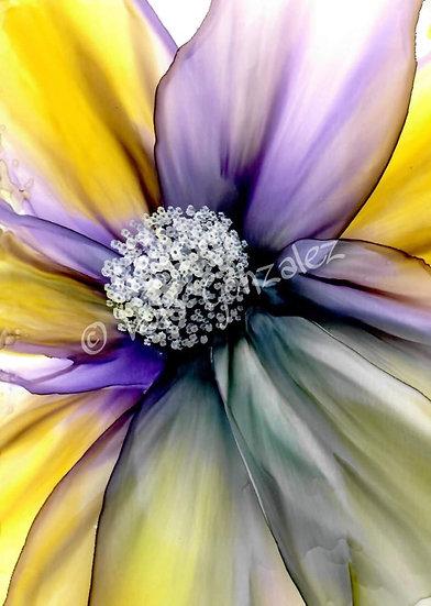 Purple and Yellow flower beauty Print