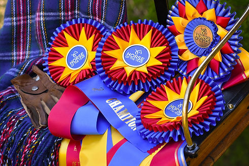 Sidelines Magazine Photo of HOTY Ribbons