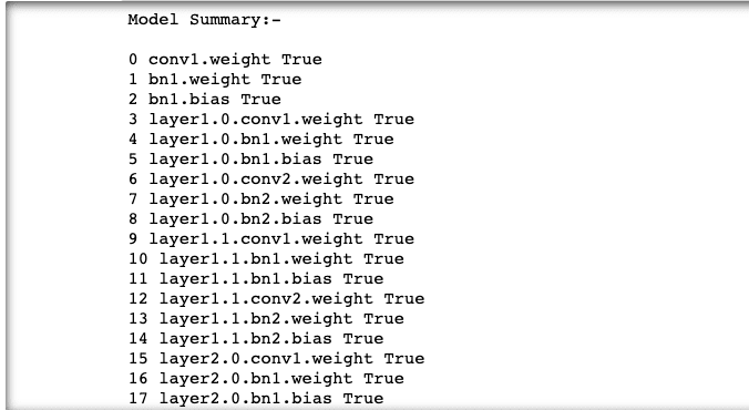 Image by author: Model Summary of pre-trained weights