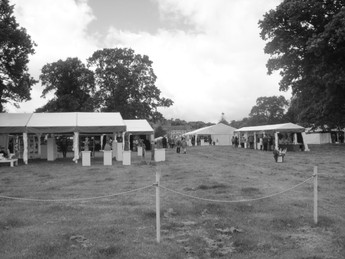 Potfest in the Park - still rescheduled
